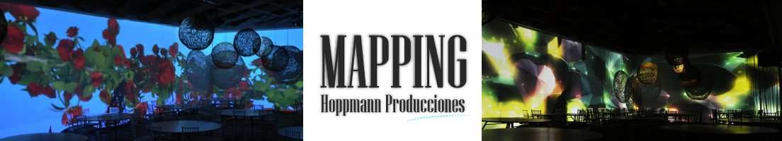 mapping banner-02